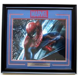 Spider-Man 26x27 Custom Framed Photo Display