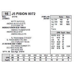 J5 FISION 8072