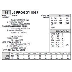 J5 FROGGY 8087