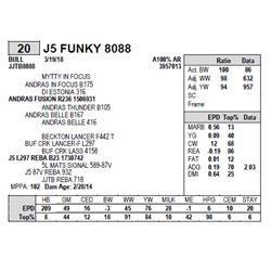 J5 FUNKY 8088