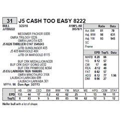 J5 CASH TOO EASY 8222