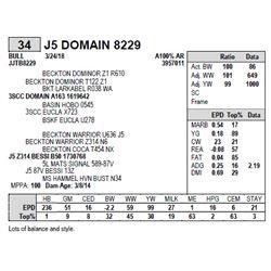 J5 DOMAIN 8229