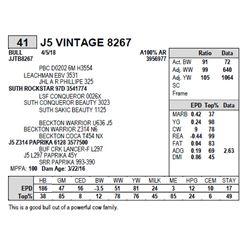 J5 VINTAGE 8267