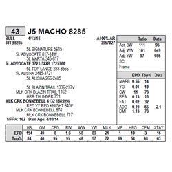 J5 MACHO 8285