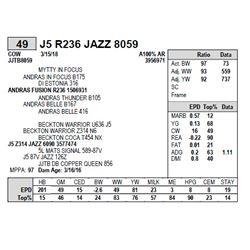 J5 R236 JAZZ 8059