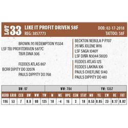 LIKE IT PROFIT DRIVEN 58F