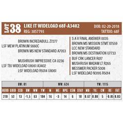 LIKE IT WIDELOAD 68F-A3402