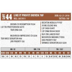 LIKE IT PROFIT DRIVEN 78F