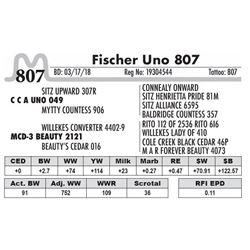 807 - Fischer Uno 807