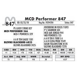 847 - MCD Performer 847