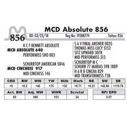 856 - MCD Absolute 856
