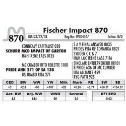 870 - Fischer Impact 870