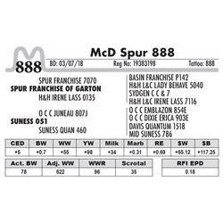 888 - McD Spur 888