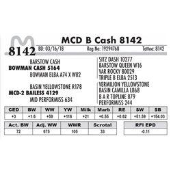 8142 - MCD B Cash 8142
