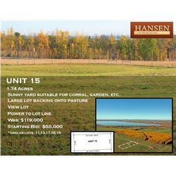 Unit 15