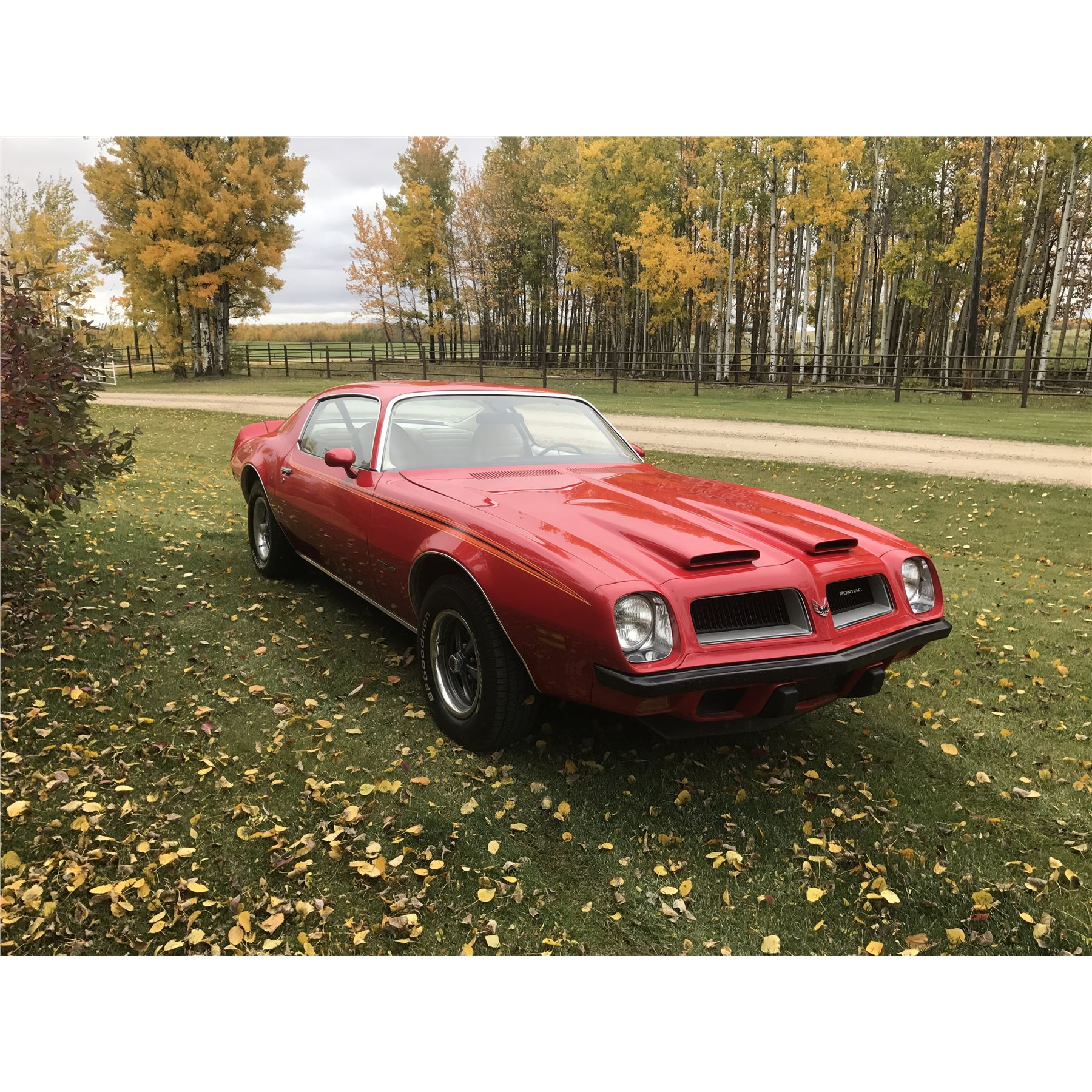 1974 PONTIAC FIREBIRD FORMULA 455 1 OF 160 RAM AIR BIG BLOCKS