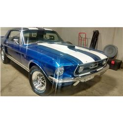 1967 FORD MUSTANG BEAUTIFUL BUILD STROKER CUSTOM
