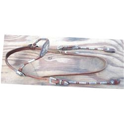 Victor silver brow band headstall, lots of silver