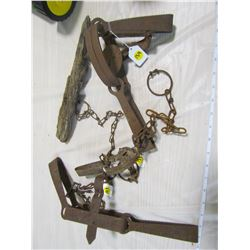 LOT OF LEG HOLD ANIMAL TRAPS