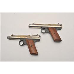 19EU-15 PELLET GUN LOT