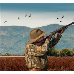 OC Outfitters - Dove Hunt - Argentina