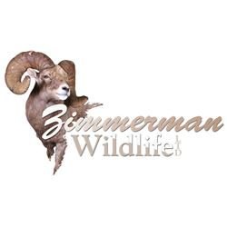 Zimmerman Wildlife Taxidermy Cert.