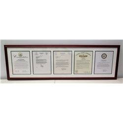 Framed Jim Nabors 2009 American Patriot Awards: State of Hawaii, U.S. Senate, U.S. Congress, House o