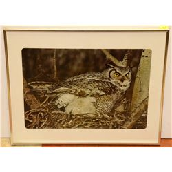 LARGE MATTED FRAMED OWL PRINT