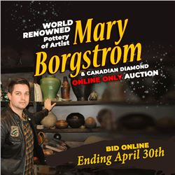 CHECK OUT THE ONCE IN A LIFETIME MARY BORGSTROM