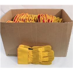 BOX OF 24 YELLOW GLOVES
