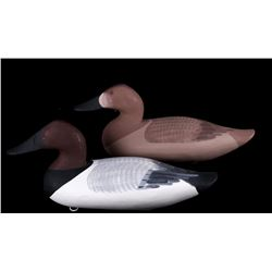 Canvasback Decoy Pair by Patrick Vincenti