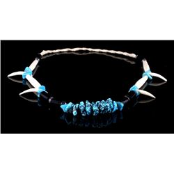 Sleeping Beauty Turquoise w/ Tusk & Claws Necklace