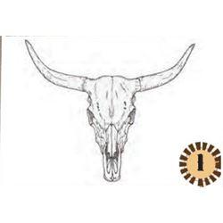 ASSORTED LONGHORN & BUFFALO SKULLS