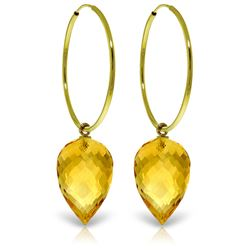 Genuine 19 ctw Citrine Earrings Jewelry 14KT Yellow Gold - REF-38P6H