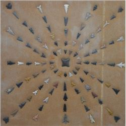 ANASAZI INDIAN ARROW HEAD COLLECTION