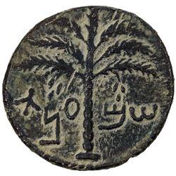 ANCIENT JUDEA: Bar Kochba Revolt, 132-135, AE 25 (8.26g). EF
