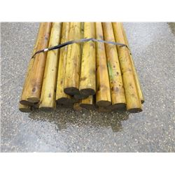 GREEN TREATED POSTS