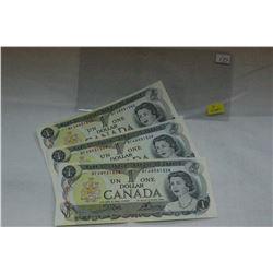 Canada Dollar Bill (3)