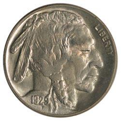 1929 Buffalo Nickel Coin
