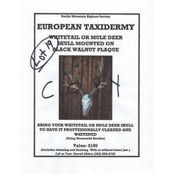 Deer Euro Mount Certificate