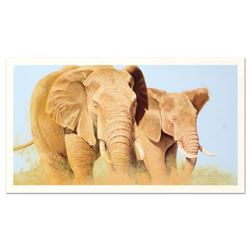 """Graeme Stevenson, """"Elephants In The Wild"""" Limited Edition, Numbered and Hand Signed."""