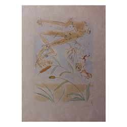 """Salvador Dali- Original engravings with color """"The oak and the reed"""""""