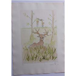 "Salvador Dali- Original Engravings with color by pochoir ""The Sick Deer"""