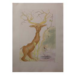 """Salvador Dali- Original Engravings with Color by Pochoir """"Le Cerf Se Voyant Dans L'Eau"""""""