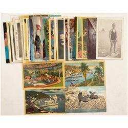 Catalina Island, CA Postcards  (103299)