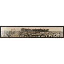 Fort Bragg, CA Lumbering Panorma  (91505)