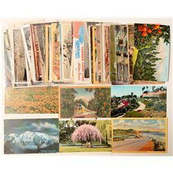 Los Angeles, CA Postcard Collection  (103292)