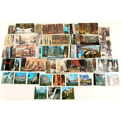 Yosemite Valley Area Postcard Collection  (102655)