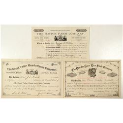 Colorado Cattle & Farm Stock Certificates  (91781)