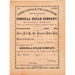 Honokaa Sugar Company Stock Certificate  (101562)